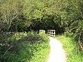 Footbridge in Loe Valley - geograph.org.uk - 984731.jpg