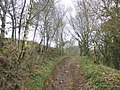 Footpath ascends to North Hill - geograph.org.uk - 1774230.jpg