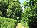 Footpath north of Coates Castle - geograph.org.uk - 1374462.jpg