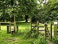 Footpath through Burton Bushes - geograph.org.uk - 514760.jpg