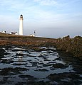 Foreshore at Scurdie Ness Lighthouse - geograph.org.uk - 633884.jpg