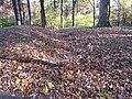 Fort Mill Ridge Civil War Trenches Romney WV 2008 10 30 05.JPG