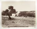 Fotografi från Rakels grav - Hallwylska museet - 104415.tif