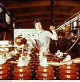 Fotothek df n-15 0000215 Facharbeiter für Sintererzeugnisse.jpg