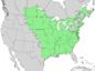 Fraxinus pennsylvanica range map 4.png