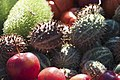 Fruits Exotiques CL J Weber (23047173754).jpg
