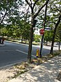 Funny temporary infrastructure, Crombie Park, 2013 08 21 (9).JPG