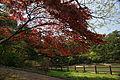Futatabi park14n4592.jpg