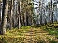 G. Miass, Chelyabinskaya oblast', Russia - panoramio (72).jpg