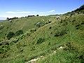 GOC Ashridge & Ivinghoe 053 Incombe Hole (36088300166).jpg