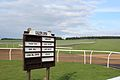 Gallop openings at Warren Hill in Newmarket, UK.jpg