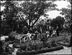 Garden scene with large group of men under large tree (3073216994).jpg