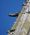 Gargoyle Saint-Ouen 11.jpg
