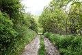 Garni - trail.jpg