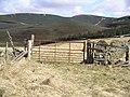Gate, Mailingsland Hill - geograph.org.uk - 150621.jpg