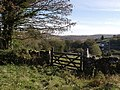 Gate above Hexworthy - geograph.org.uk - 597272.jpg