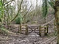 Gateway to Access land on the north side of Blackcap - geograph.org.uk - 1769468.jpg