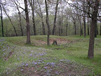National Register of Historic Places listings in Juneau County, Wisconsin - Image: Gees slough effigy mounds 2