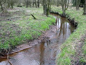 Geeste (river) - Image: Geeste Heinschenwalde