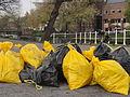 Gele zakken Leiden2.jpg