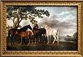 George stubbs, fattrici e puledri in un paesaggio fluviale, 1763-68 ca. 01.jpg