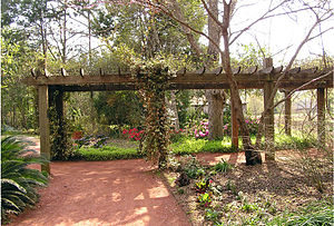 Georgia Southern Botanical Garden - The rose arbor with azeleas blooming in the background.