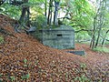 Getting buried in the bank - geograph.org.uk - 1567357.jpg