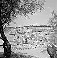 Gezicht op Mount Canaan bij Safad (Safed) vanaf de omliggende heuvels, Bestanddeelnr 255-3976.jpg