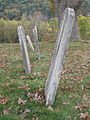 Ginevan Cemetery Little Cacapon WV 2008 10 13 07.jpg