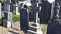 Glasnevin Cemetery (4512243467).jpg