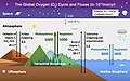 Global Oxygen Cycle.jpg