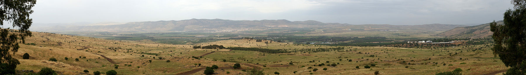 Golan Heights banner2.jpg