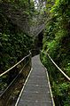 Gorges de la Fou 05082014 1.jpg