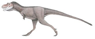 Gorgosaurus - Restoration of a sub-adult individual