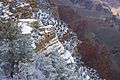 Grand canyon snow.jpg