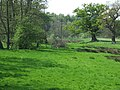 Grazing land by the brook, Stableford, Shropshire - geograph.org.uk - 414300.jpg