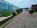 Green House Mechanization - panoramio (5).jpg