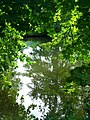 Green Roof - panoramio.jpg