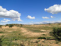 Green desert (8368855852).jpg
