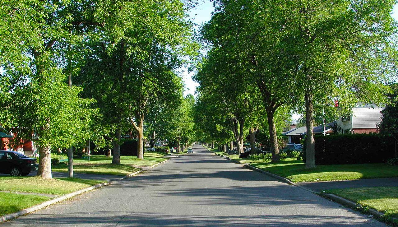Sacramento Area Landscape Designers