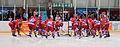 HC České Budějovice - Lausanne Hockey Club vs. HC České Budějovice, 27.08.2010.jpg