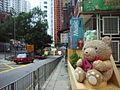 HK Tin Hau Temple Road 11 Kiu Hing Mansion Landmark Bear.JPG