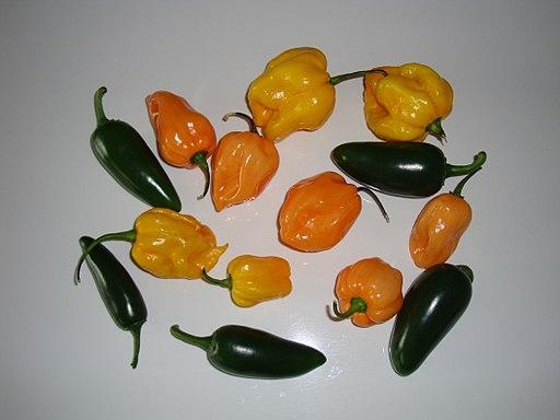 Qué diferencia hay entre el chile habanero y el jalapeño