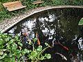 Hacienda Chorlavi pic. aa9360.jpg