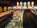 Hamburger Hauptbahnhof bei Nacht - panoramio.jpg