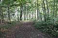 Hardtweg - panoramio (1).jpg