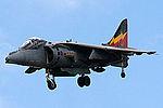 Harrier (5132472969).jpg