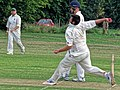 Hatfield Heath CC v. Thorley CC on Hatfield Heath village green, Essex, England 16.jpg