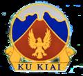 Hawaiian Air Force - Emblem.png