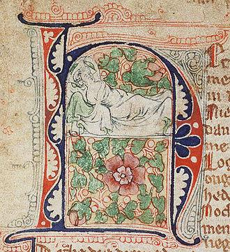 Hein van Aken - Hein van Aken dreaming of a rose.